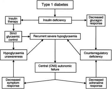 Hypoglycemia Schematic Diagram